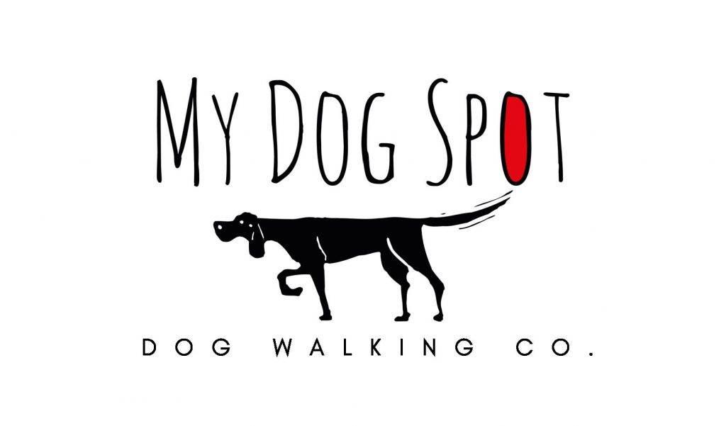 Pasadena Dog Walking Services