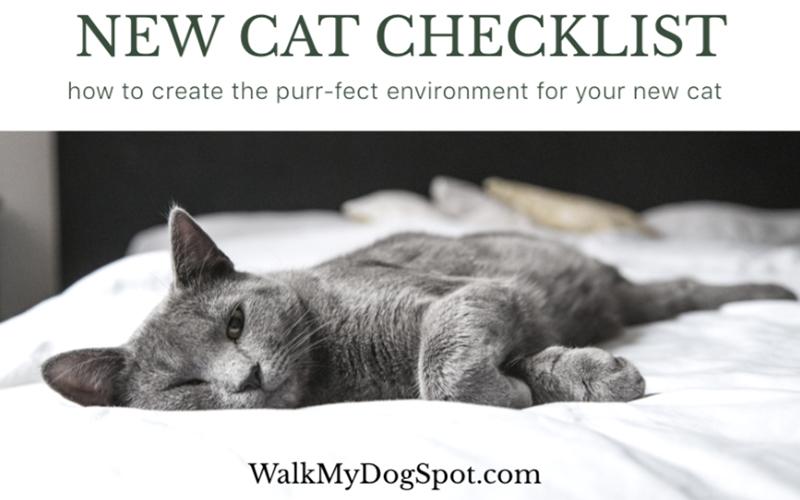 New Cat Checklist