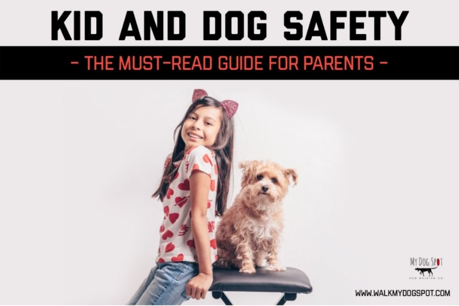Kid and Dog Safety The Must-Read Guide For Parents